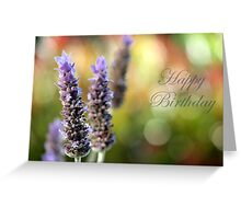 Happy Birthday!! Greeting Card
