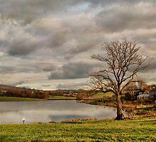 Colne Reservoir. by Irene  Burdell