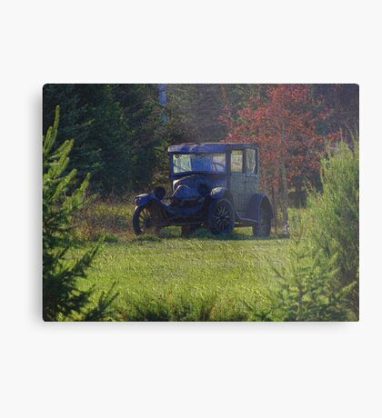 Woodland Cruiser Metal Print