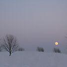 Moon Shining Over The Snow by Linda Miller Gesualdo