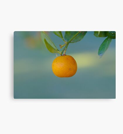 Fruit of the Tree Canvas Print