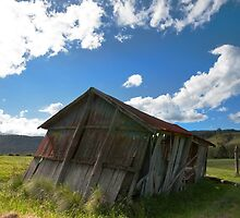 The Lean To - Killarney Qld by Beth  Wode