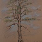 Tree in Ardgillan Park by Geraldine M Leahy
