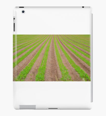 Crop Lines iPad Case/Skin