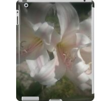 Peaceful Elegance iPad Case/Skin