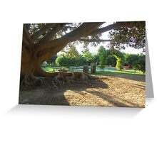 Ficus tree Greeting Card