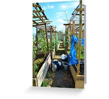Community Garden Greeting Card