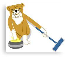 Bulldog Curling Canvas Print