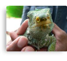 Lizard Saying Hello Canvas Print