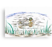 Duck's Reflection Canvas Print