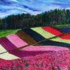 Fields of Colour by Nira Dabush