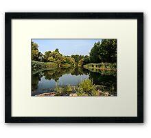 Morning in the floodplain forest Framed Print