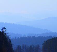 Wild Blue Yonder by Barrie Daniels