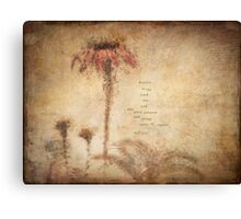 Coneflower Orange Canvas Print