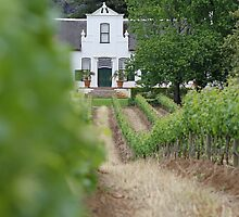 Buitenverwachting Wine Estate by Etwin