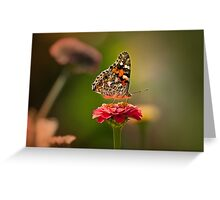 Painted Lady's summer profile Greeting Card