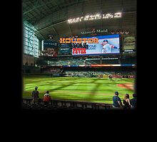 Houston Home of Baseball Fever by don thomas