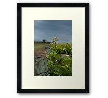 Pettavel Winery Framed Print