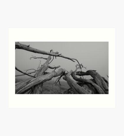 line/ten Art Print