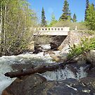 Water under the Bridge, RMN Park Colorado by David  Hughes