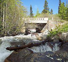Water under the Bridge, RMN Park Colorado by David  Hughes