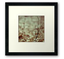 branch and ghost Framed Print