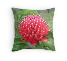 White-Tipped Waratah (Telopea) Throw Pillow
