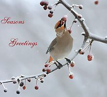 Bohemian Seasons Greetings by Deborah  Benoit