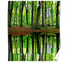 Trees reflected in the lake Poster