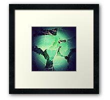 Maine Foliage Framed Print