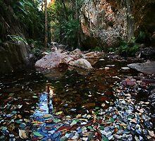 El Questro Gorge by Andrew Wallace