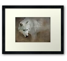 Just Walk On By Framed Print