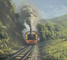 Vale of Rheidol Railway by Richard Picton