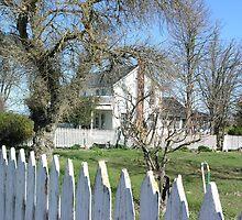 The Farm House by Sandra Gray
