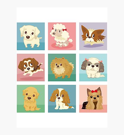 Many poses of puppies Photographic Print