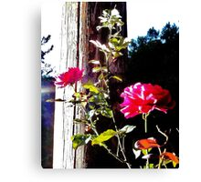 Charged Roses Canvas Print