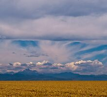 Colorado Mountains And Grain Fields by Gregory J Summers