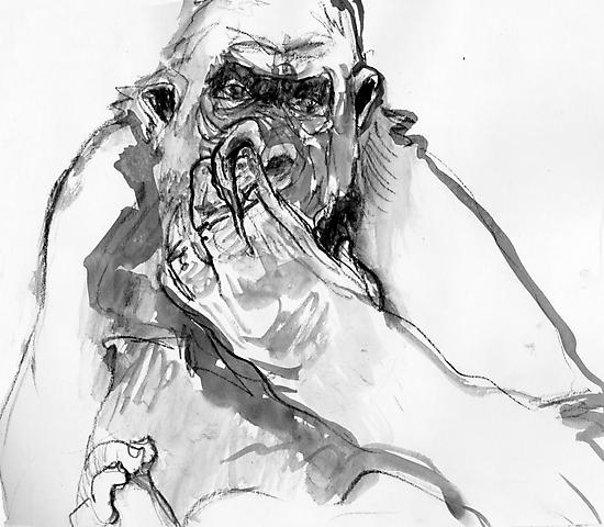 Gorilla Drawing 2 by WoolleyWorld