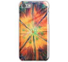 Sunburst Garden iPhone Case/Skin