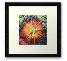 Sunburst Garden Framed Print
