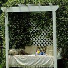 Garden Tea Party! by Gabrielle  Lees