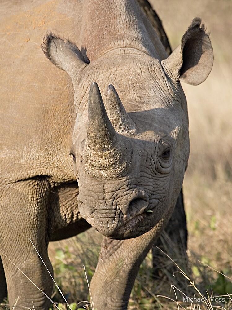 Black Rhino Close Up  by Michael  Moss