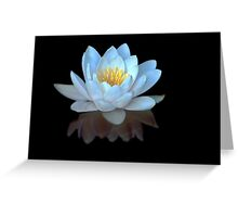 Water Lilly Meditation Greeting Card