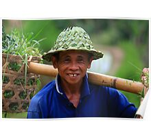 Rice harvest- Bali Rice terraces Poster