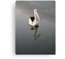 Pelican on a Mirror in Ohmas Bay Canvas Print