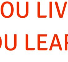 YOU LIVE YOU LEARN  Sticker