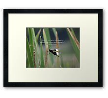 Before you hate something-inspirational Framed Print