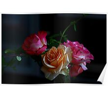 Tranquility- Roses still life Poster