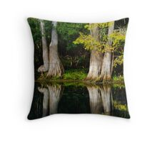 Pastoral Reflections Throw Pillow