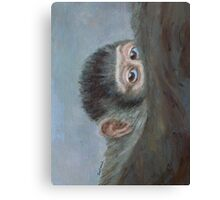 Me And My Mandrill Mother Canvas Print